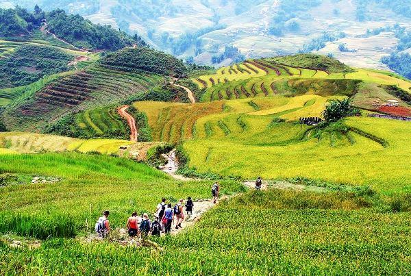5 Bản làng nhất định phải đến khi đi du lịch Sapa