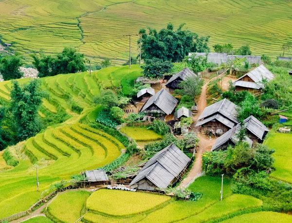 Bản làng Sapa.jpg