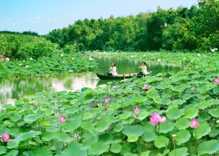 Tour du lịch Sài Gòn, Cao Lãnh, Sa Đéc, Đồng Tháp Mười mùa nước nổi 2 ngày