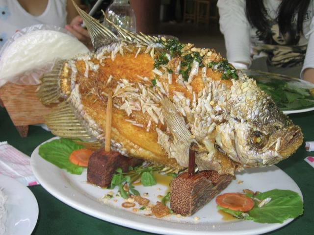 Cá Tai Tượng Chiên Xù